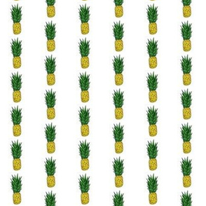 Pineapple Stripe on White
