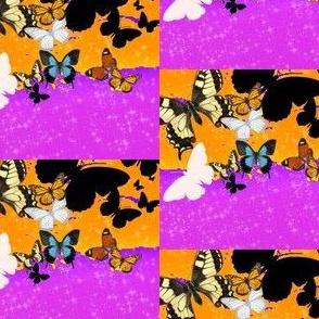 Checks and Butterflies