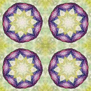 Green Grass Star Mandala