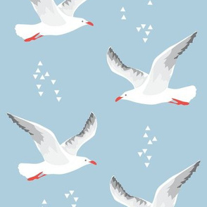 seagullsRedBeak