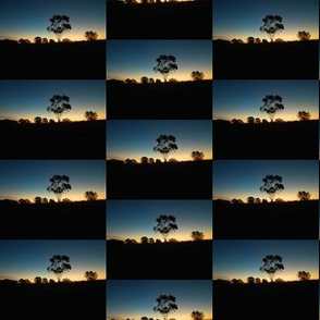 Sunset Skyline Checkerboard - Australian Landscape (Ref. 1805 )