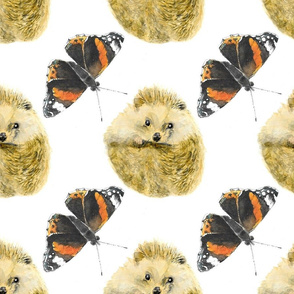 Butterflies and Hedgehogs
