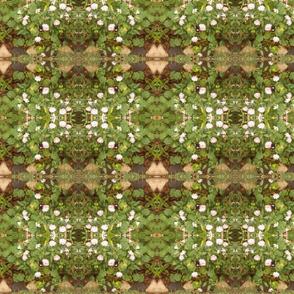 Floral Paths in the  Garden Maze (Ref. 0378)