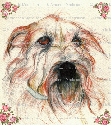 Rrrshaggy_dog_orig_ed_preview