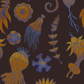 Undersea dance, Ernst Haeckel tribute