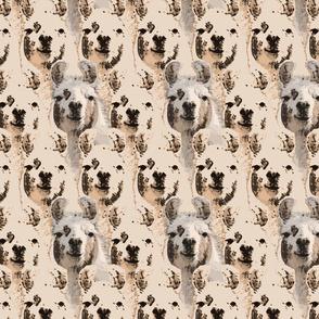 Llama faces - sepia