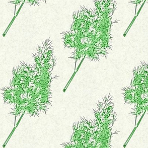 dill-outline