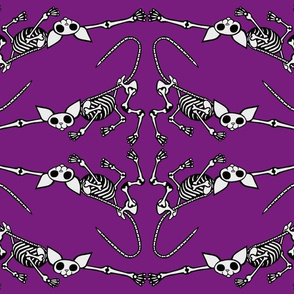 SphynxieBonez Reaching Flipped in Purple