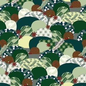 Hiding Hedgehogs woodland