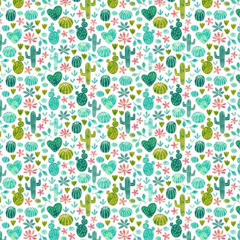 Cactus2_shop_preview