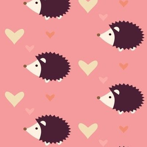 Hedgehog pink