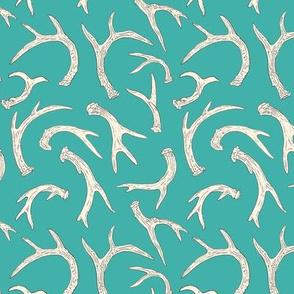 Antlers Aqua