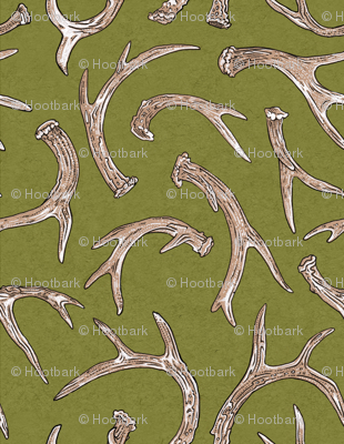 Antlers Moss