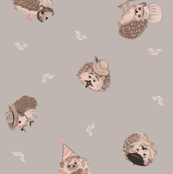 Happy Hairy Hedgehogs
