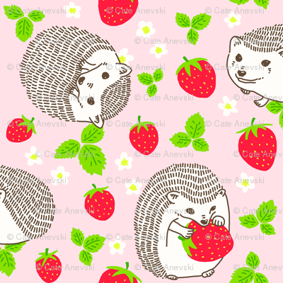 Hedgehogs & Strawberries