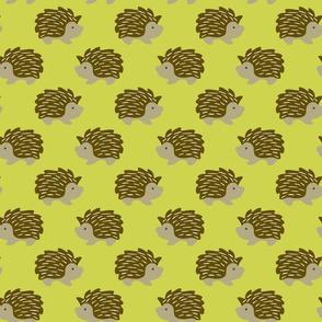 Hedgehog on Chartreuse