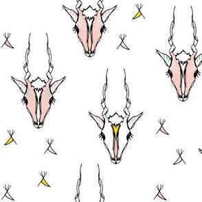 Antelope pink white