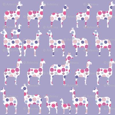 llamas among llamas