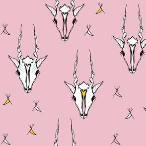 Antelope pink