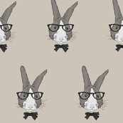 hipster bunny portrait in glasses and bow