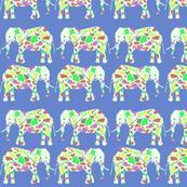 Elephantscolor