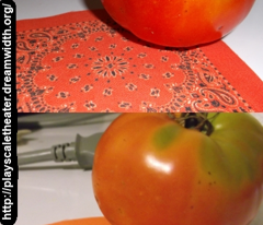 Minidanna A-Tomato Red With Black and White Pattern