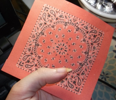 Minidanna A-Coral Pink