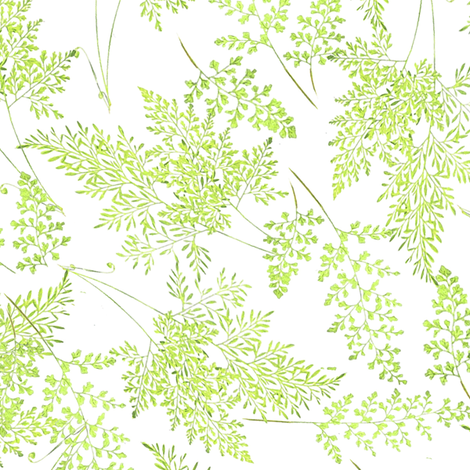 Fancy Ferns in Spring fabric by willowlanetextiles on Spoonflower - custom fabric