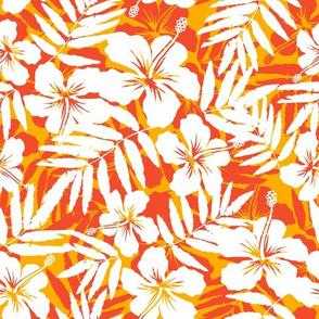 Orange tropic flowers