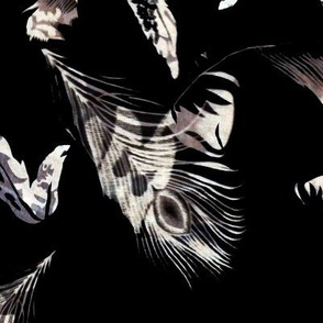 Black falling feathers