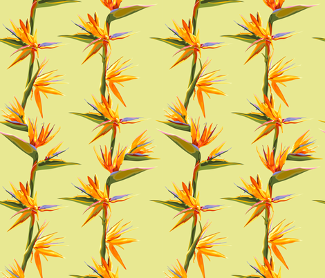 seamless_patter_of_strelitzia_flowers_on_a_bench_with_leaves fabric by nadiiaz on Spoonflower - custom fabric