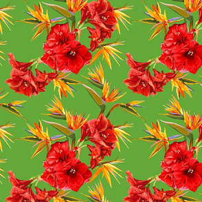 seamless_pattern_of_flowers_of_amaryllis_and_strelitzia
