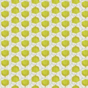 Cinder Chartreuse
