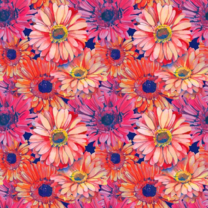 seamless_pattern_element_of_colorful_gerbera_flowers