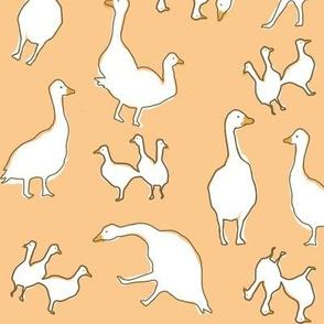 birds peach