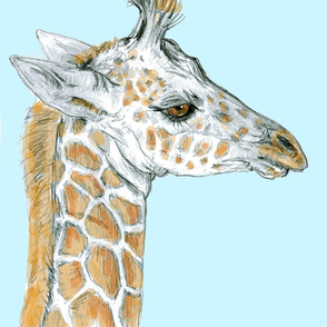 Baby Giraffe test