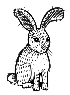 Bunny - Black and White