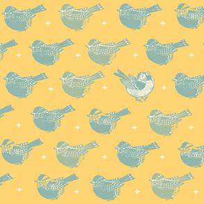 Happy Bird Ikat Co-ord