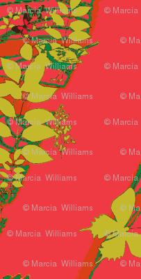 What's A Mistletoe?
