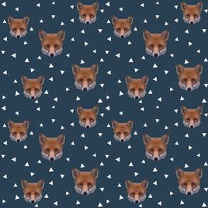foxgeo