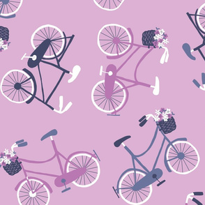 Hudson Collection - Bicycles