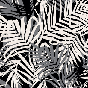 Tropic Nights