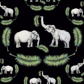 The Elephant Queens