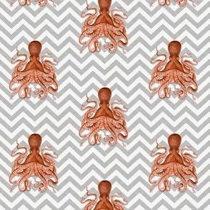 Mini Octopus on Chevron