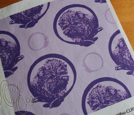 Collared Affenpinscher portraits - purple