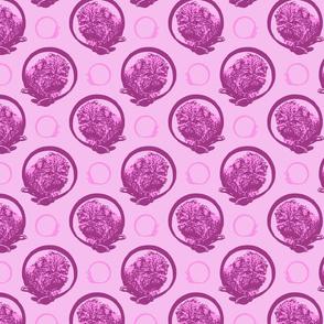 Collared Affenpinscher portraits - pink