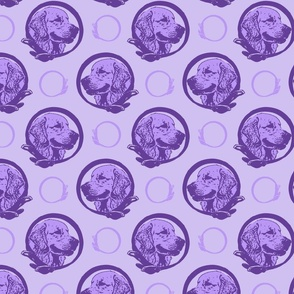Collared Golden Retriever portraits - purple