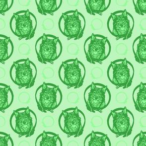 Collared Swedish Vallhund portraits - green