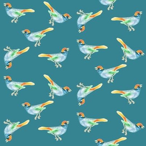 SongBird, Blue and Orange on Teal