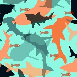 Oh My Sharks! in Orange, Black & Aqua